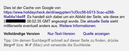 Informationen im Google Cache