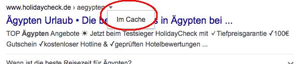 Google Cache prüfen